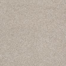 Shaw Floors Value Collections What's Up Net Cork Board 00711_E0926