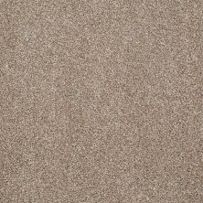 Shaw Floors Value Collections What's Up Net Mole Hill 00719_E0926