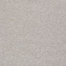 Shaw Floors Value Collections You Know It Net Antique Silk 00115_E0927