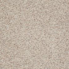 Shaw Floors Value Collections You Know It Net Bliss 00151_E0927