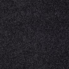 Shaw Floors Value Collections You Know It Net Stunning Navy 00401_E0927