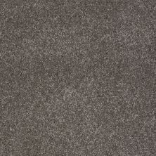 Shaw Floors Value Collections You Know It Net Stone Hearth 00703_E0927