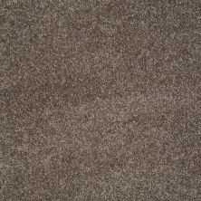 Shaw Floors Value Collections You Know It Net Rustic Taupe 00706_E0927