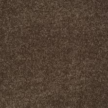 Shaw Floors Value Collections You Know It Net Sedona 00708_E0927