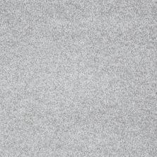 Shaw Floors Gran Diego Silver Glitz 00500_E0937