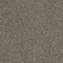 Shaw Floors Gran Diego Fleece 00704_E0937