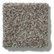 Shaw Floors Grand Illusion Fleece GF00704_E0937