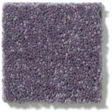 Shaw Floors Dyersburg Classic 12′ Violet Crush 00930_E0947