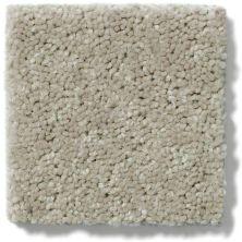 Shaw Floors Dyersburg Classic 12′ Plaster 55752_E0947