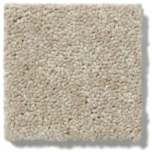Shaw Floors Dyersburg Classic 12′ Suede 00731_E0947
