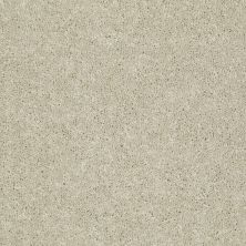 Shaw Floors Dyersburg Classic 15′ Casual Cream 00230_E0948