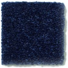 Shaw Floors Dyersburg Classic 15′ Darkest Denim 55402_E0948