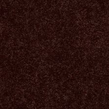 Shaw Floors Dyersburg Classic 15′ Coffee 55755_E0948