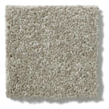 Shaw Floors Dyersburg Classic 15′ Taupe Mist 55792_E0948