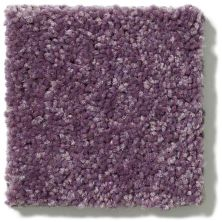 Shaw Floors Newbern Classic 12′ Violet Crush 00930_E0949
