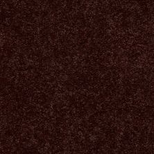 Shaw Floors Newbern Classic 12′ Coffee 55755_E0949