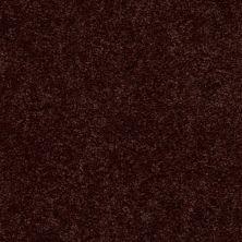 Shaw Floors Newbern Classic 12′ Coffee 55755_E0949