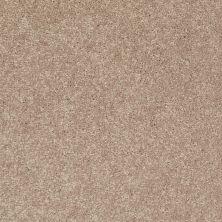 Shaw Floors Newbern Classic 12′ Dusty Trail 55793_E0949