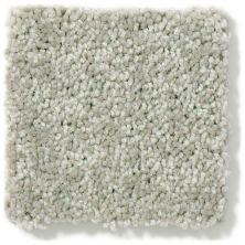 Shaw Floors Newbern Classic 15′ Pebble Path 00132_E0950