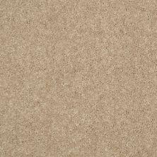 Shaw Floors Newbern Classic 15′ Straw Hat 00260_E0950