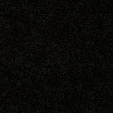 Shaw Floors Newbern Classic 15′ Coal Black 55502_E0950