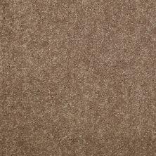 Shaw Floors Newbern Classic 15′ Candied Truffle 55750_E0950
