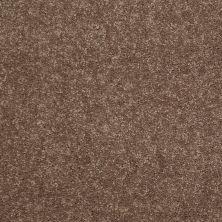 Shaw Floors Newbern Classic 15′ Winter Wheat 55791_E0950