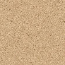 Shaw Floors Briceville Classic 12 Sun Beam 00240_E0951