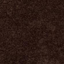 Shaw Floors Briceville Classic 15 Walnut 00705_E0952