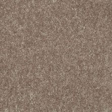 Shaw Floors Briceville Classic 15 River Slate 00720_E0952