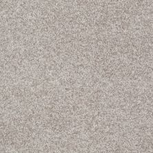 Shaw Floors Value Collections Gran Diego Net Porcelain 00101_E0960