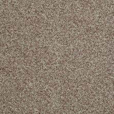 Shaw Floors Value Collections Gran Diego Net Pecan 00701_E0960