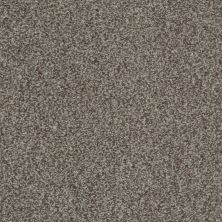 Shaw Floors Value Collections Gran Diego Net Fleece 00704_E0960