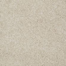 Shaw Floors Adam's Choice (s) Venetian Tile 00106_E0970