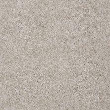 Shaw Floors Adam's Choice (s) Abalone 00153_E0970