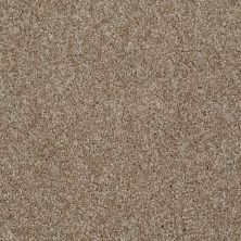 Shaw Floors Adam's Choice (s) Bungalow 00701_E0970