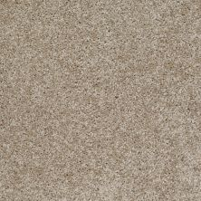 Shaw Floors Adam's Choice (s) Northern Cliffs 00711_E0970