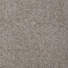 Shaw Floors Adam's Choice (s) Driftwood Solid 00750_E0970