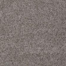 Shaw Floors Adam's Choice (s) Stone 00751_E0970