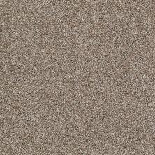 Shaw Floors Adam's Pride (t) Olivine 00710_E0972
