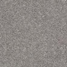 Shaw Floors Adam's Pride (t) Granite 00713_E0972