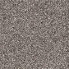 Shaw Floors Adam's Pride (t) Quartzite 00714_E0972