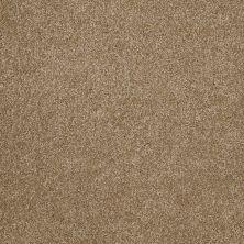 Shaw Floors Anso Open I (s) Bridgewater Tan 00709_E0986