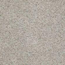 Shaw Floors Anso Open I (b) Apple Blossom 00150_E0988