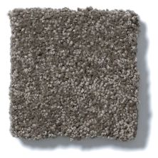 Shaw Floors Anso Open III (s) Stone Hearth 00703_E0992