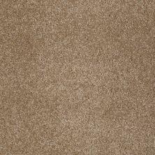 Shaw Floors Anso Open III (s) Bridgewater Tan 00709_E0992