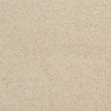 Shaw Floors Sateen Moments (s) Canvas 00107_E0995