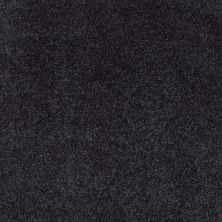 Shaw Floors Value Collections Xvn06 (s) Stunning Navy 00401_E1238
