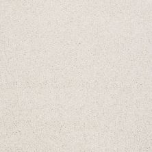 Shaw Floors Value Collections Xvn06 (t) Natural Cotton 00110_E1239