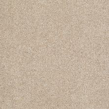 Shaw Floors Value Collections Xvn06 (t) Rich Butter 00210_E1239